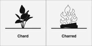 chard charred