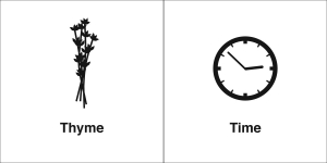 thyme time